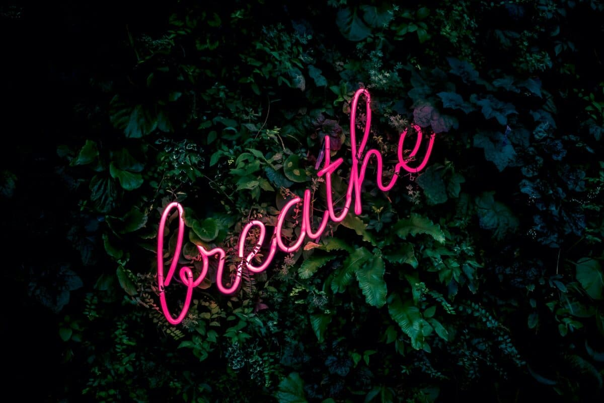 """Scritta rosa fluso su sfondo di foglie verdi che dice """"breath"""""""